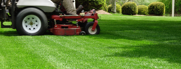 Colleyville Lawn Care Services