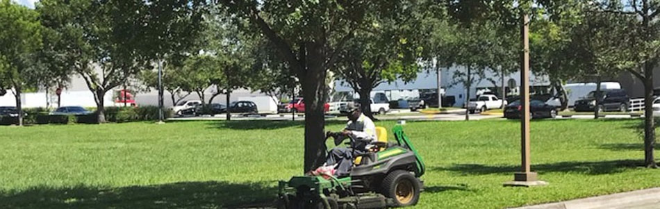 Lawn Mowing Commercial Accounts